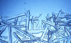 kristaller-webb